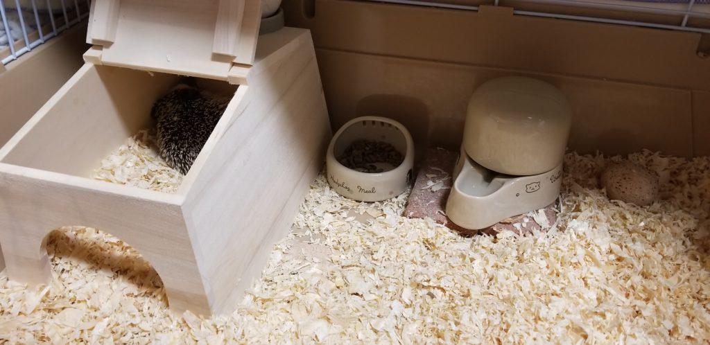 小屋 エサ皿 水入れ